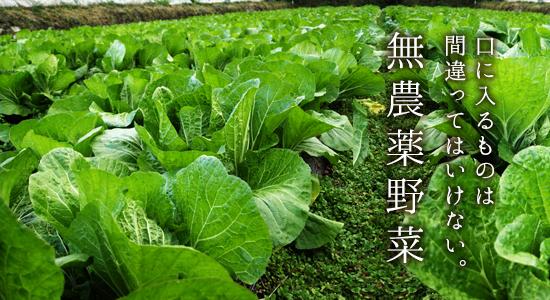 秋川牧園の野菜宅配